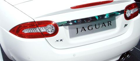 Jaguar in
