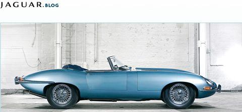 Jaguar-blog in