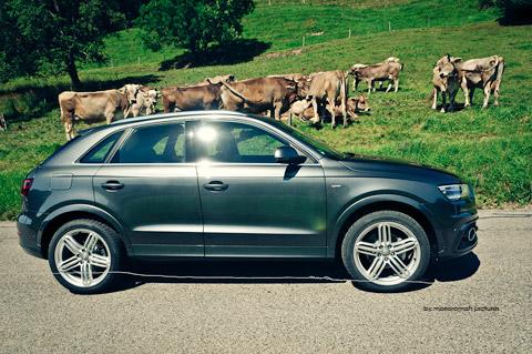 DSC 9113 in Impressionen: Audi Q3