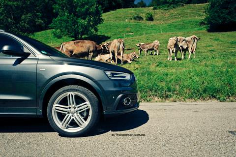 DSC 91151 in Impressionen: Audi Q3